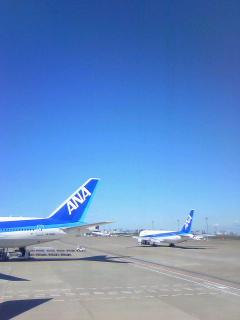 九州にきております